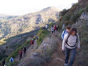 Read more about the article Fotografies de l'excursió al Benicadell i Otos