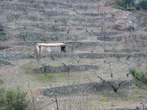 Visita a la Vall d'Almonacid i Sogorb
