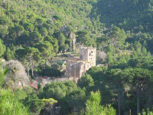Excursió a la vall de la Murta dissabte 12 d'abril 2014